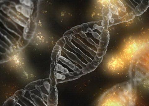 Genetisk sträng och risk för cancer